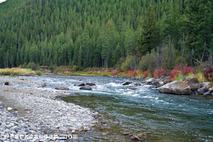 Gallatin national forest fishing for Missouri fishing license age