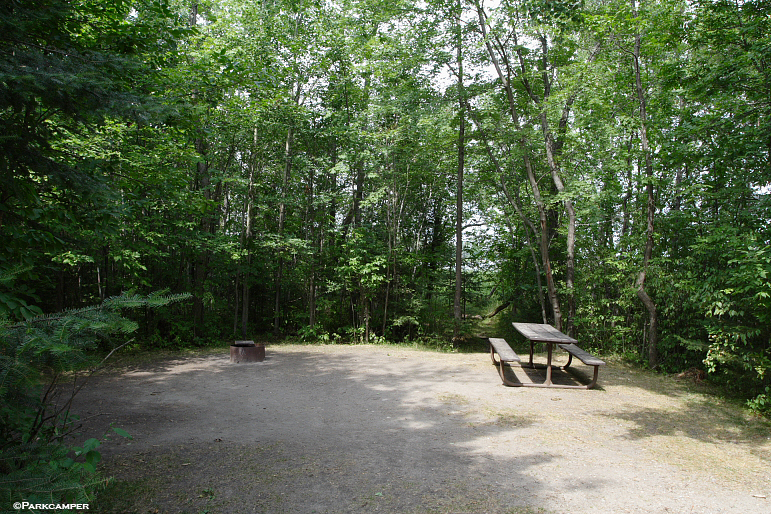 Wooden frog campground