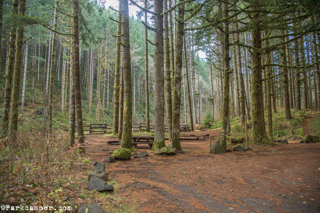 Tillamook-State-Forest-Gales-Creek-Campground-picnic