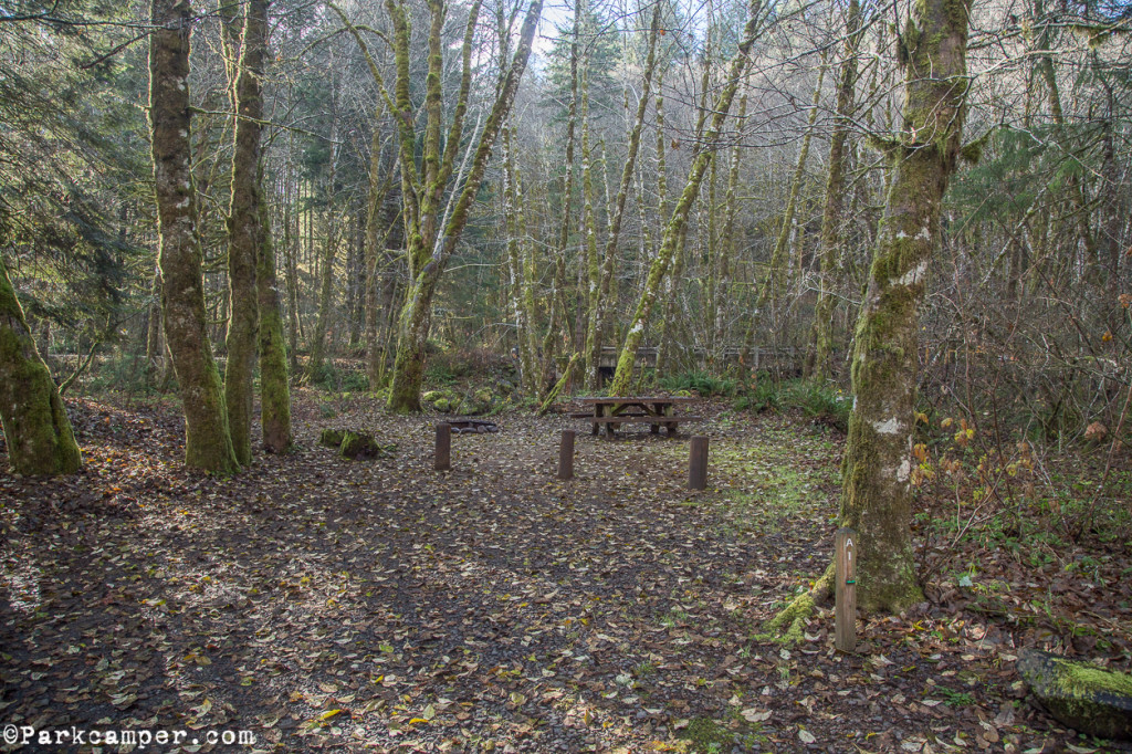 Tillamook-State-Forest-Gales-Creek-Campground-site2